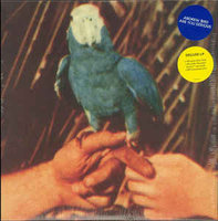 Andrew Bird. Are You Serious (CD)
