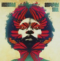 Audio CD Incognito. Amplified soul