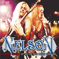 Audio CD Nelson. Perfect Storm. After The Rain World Tour