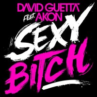 Audio CD David Guetta Feat. Akon. Sexy Bitch