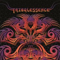 Audio CD Various Artists. Tribalessence