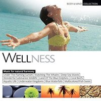 Audio CD Various Artists. Body & Mind Collection - Wellness
