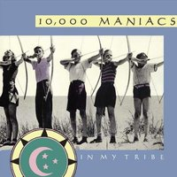 LP 10,000 Maniacs: In My Tribe (LP)