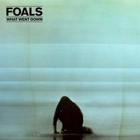 Foals. What went down (LP)
