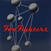 LP Foo fighters. Colour and the shape (LP)