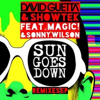 David Guetta & Showtek. Sun Goes Down (LP)
