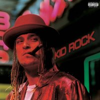 LP Kid Rock. Devil Without A Cause (LP)