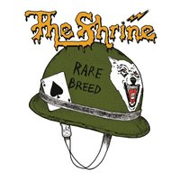 LP The Shrine. Rare Breed (LP)