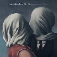 LP Punch Brothers. The Phosphorescent Blues (LP)