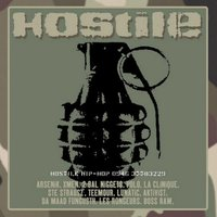 Hostile Hip-Hop (LP)