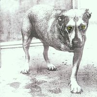 Alice In Chains. Alice in chains (CD)