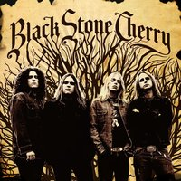 Black Stone Cherry. Black Stone Cherry (CD)