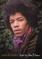 Jimi Hendrix. Hear My Train A Comin' (DVD)