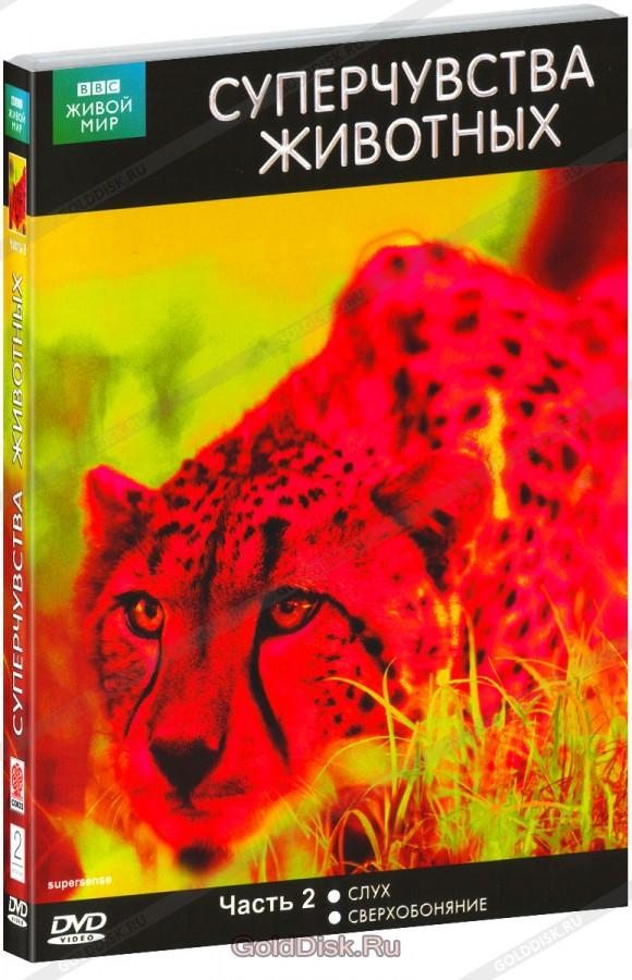 «Ббс Худ Фильмы Про Животных» — 2005