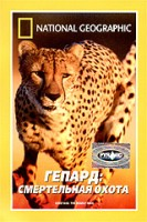 DVD ���. ������: c���������� ����� / National Geographic. Cheetans: The Deadly Race
