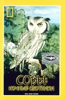 ���. ����: ������ �������� (DVD) / National Geographic. Owls: Silent Hunters
