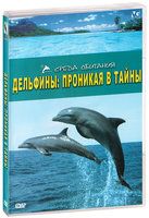 Среда обитания. Дельфины: Проникая в тайны