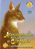 Планета кошек: Абиссинские кошки и Сомали