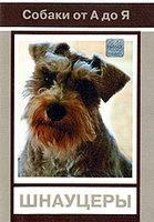 Собаки от А до Я: Шнауцеры