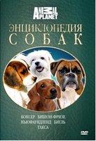 Animal Planet: Энциклопедия собак: боксер, бишон-фризе, ньюфаундленд, бигль, такса