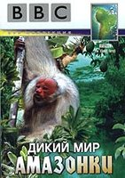 BBC: Дикий мир Амазонки (DVD) / Amazon: The Flooded Forest