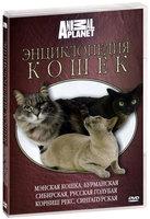 Animal Planet. Энциклопедия кошек: мэнская кошка, бурманская, сибирская, русская голубая, корниш рекс, сингапурская