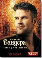 Караоке: Андрей Бандера - Потому что люблю