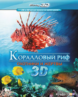 Blu-Ray Коралловый риф: Охотники и жертвы (Real 3D Blu-Ray) / Fascination coral reef 3D: hunters & the hunted