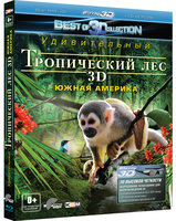����������� ���: ����� ������� 3D (Real 3D Blu-Ray) / Fascination Rainforest