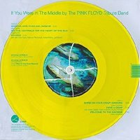 LP The Pink Floyd: If You Were In The Middle (LP)