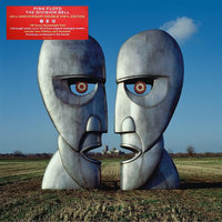 LP The Pink Floyd: The Division Bell (20Th Anniversary) (LP)
