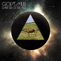 LP Gov'T Mule: Dark Side Of The Mule (LP)