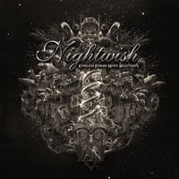 LP Nightwish: Endless Forms Most Beautiful (LP)