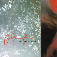 LP Cocteau Twins. Tiny Dynamine / Echoes In A Shallow Bay (LP)