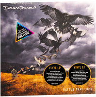 David Gilmour. Rattle That Lock (LP)