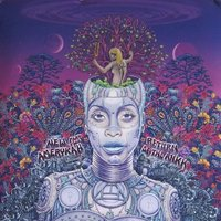 LP Erykah Badu. New Amerykah. Part Two: Return Of The Ankh (LP)