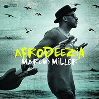 Audio CD Marcus Miller. Afrodeezia