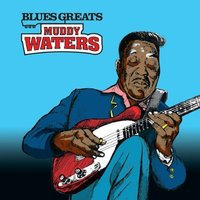 Audio CD Muddy Waters. Muddy Waters