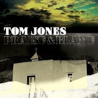 Audio CD Jones Tom. Praise & Blame
