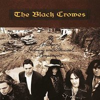 LP Black Crowes. Southern Harmony And Musical Companion (LP)