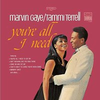 LP Marvin Gaye, Tammi Terrell. You're All I Need (LP)