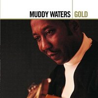 Audio CD Muddy Waters. Gold