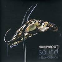 Honeyroot. Sound echo location (CD)