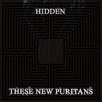 Audio CD These New Puritans. Hidden