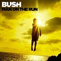 Audio CD Bush. Man of the Run
