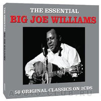 Audio CD Big Joe Williams. The Essential