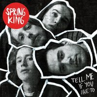 Audio CD Spring King. Tell Me If You Like To