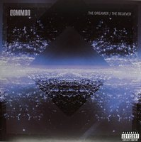 LP Common. The Dreamer, The Believer (LP)