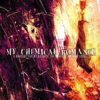 LP My Chemical Romance. I Brought You My Bullets, You Brought Me Your Love (LP)