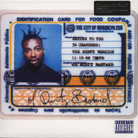 LP Ol`Dirty Bastard. Return To The 36 Chambers (LP)